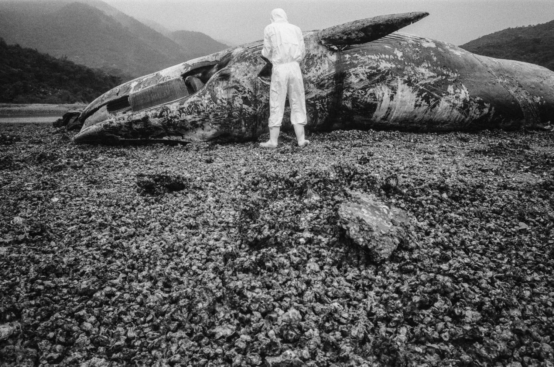 自然與環境組冠軍 - Nature and Environment 1st Prize:林振東 – am730